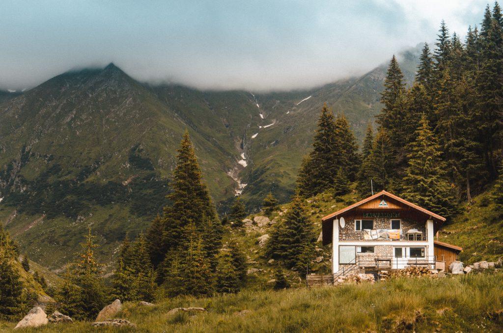 Maison en pierre à la montagne, entre les sapins